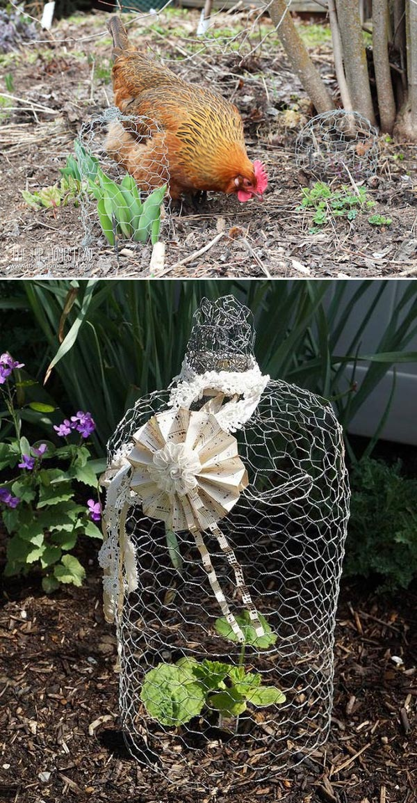 Creative Ideas Adding Chicken Wire Projects to Your Garden