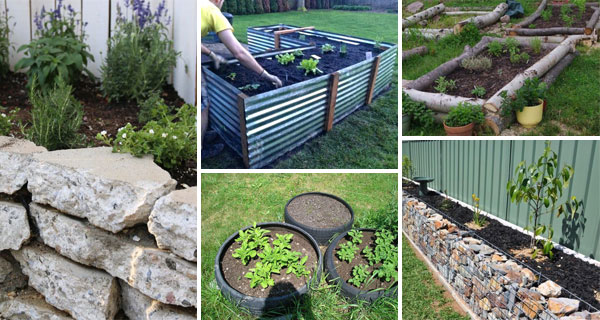 Grow Your Plants in Raised Garden Beds