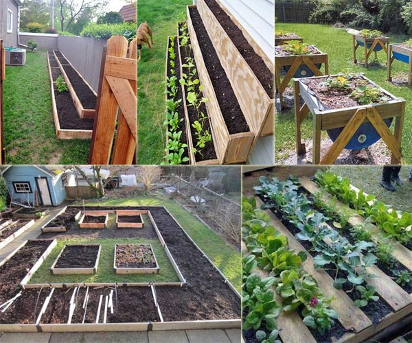 12 Ideas to Make a Small Vegetable Garden