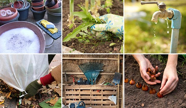15 Steps How to Winterize Your Garden